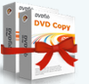 DVD Copy & DVD Ripper (1-Jahres-Version) - Bild 3639