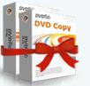 DVD Copy & DVD Ripper (1-Jahres-Version)